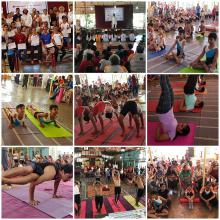 Activity - district-level-yoga-competition